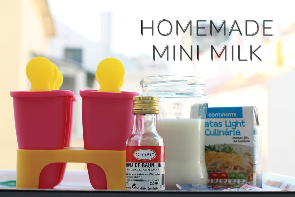 Homemade Mini Milk Ice Cream Recipe