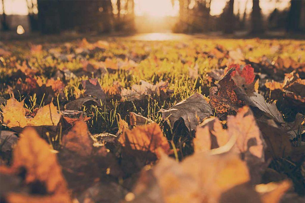 8 maneiras de aceitar melhor o fim do Verão (olá Outono!)