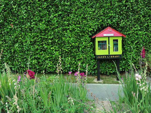 little-free-library-4