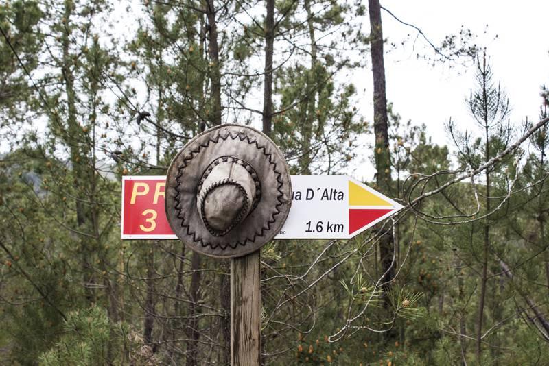 orvalho-indicacao-caminho