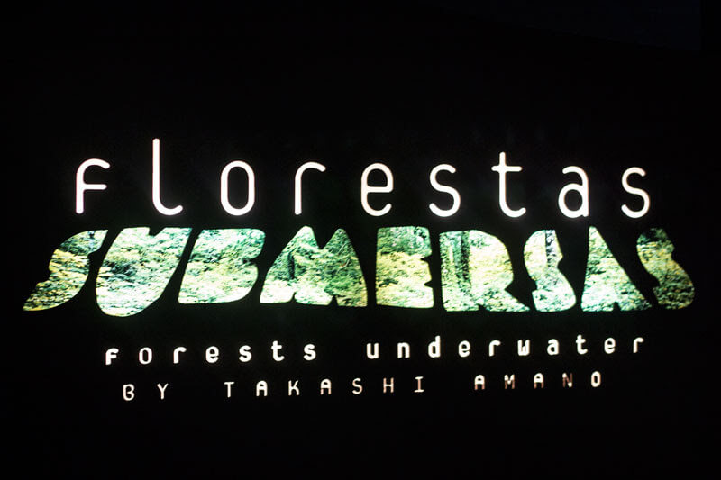 florestas-submersas